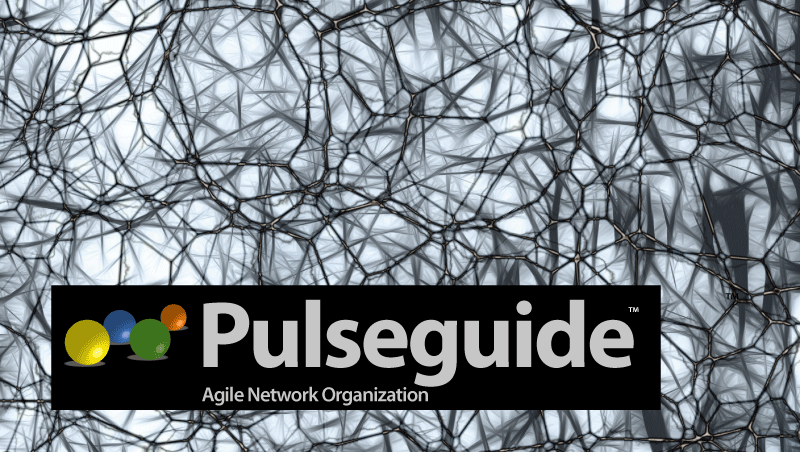 Pulse network organization for agile organisations